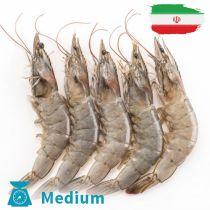 روبيان ايرانى  وسط